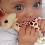 un-bebe-en-train-de-jouer-avec-sophie-la-girafe-image-d-illustration